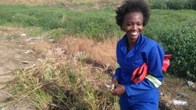 Wetland plant stock for Isipingo rehabilitation